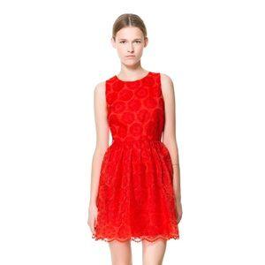 Zara Fantasy Red Lace Skater Dress